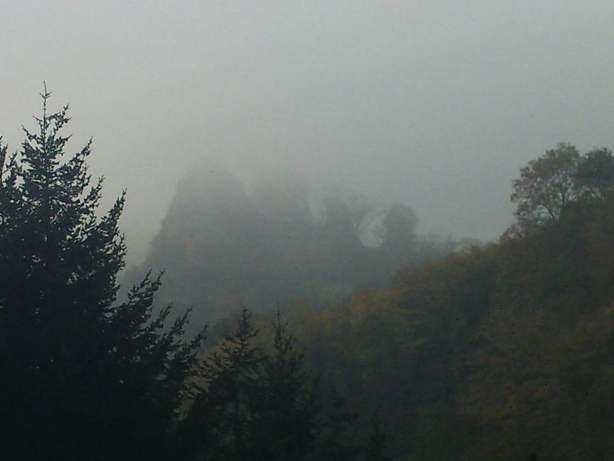 Bild: im Thüringer Wald